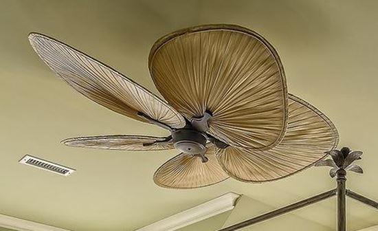 Picture of Designer Ceiling Fan